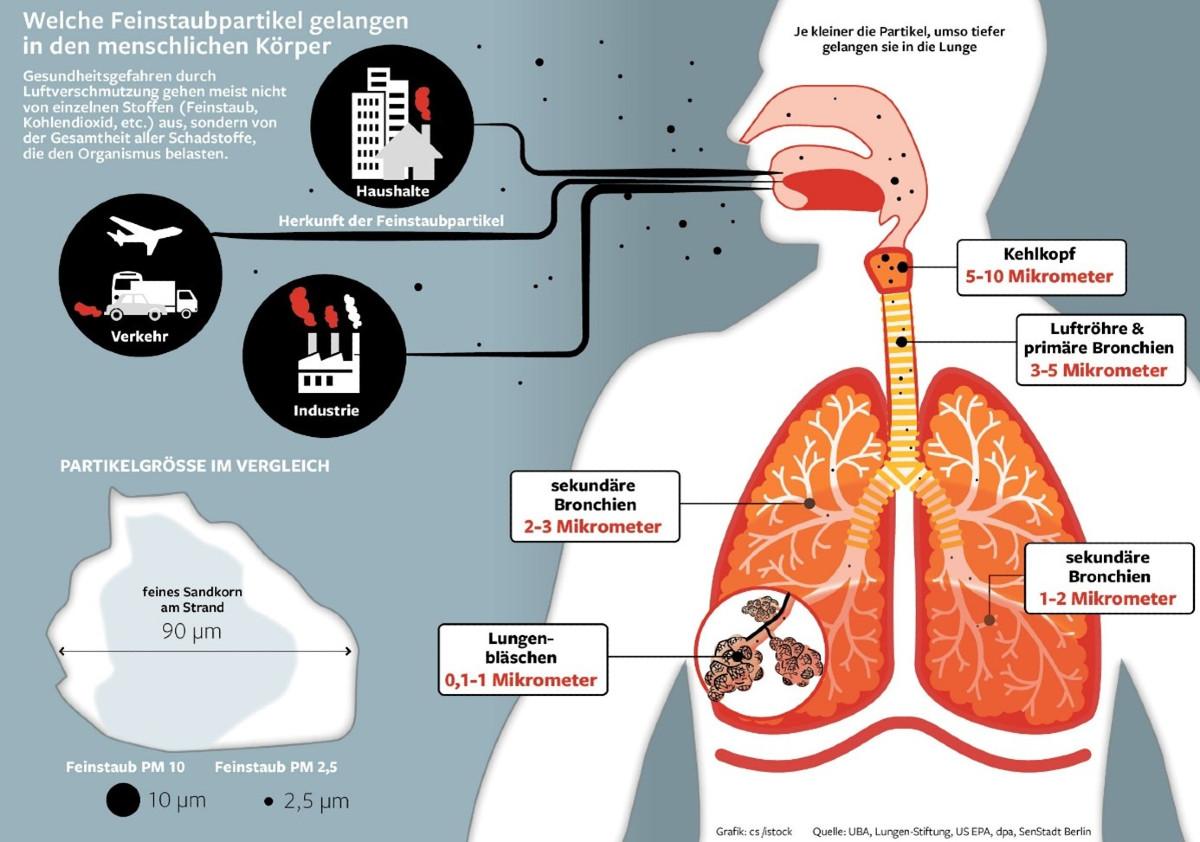 Ursachen und Folgen von Feinstaub